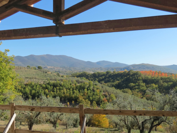 Home with a view in tranquil position for sale, Umbria.